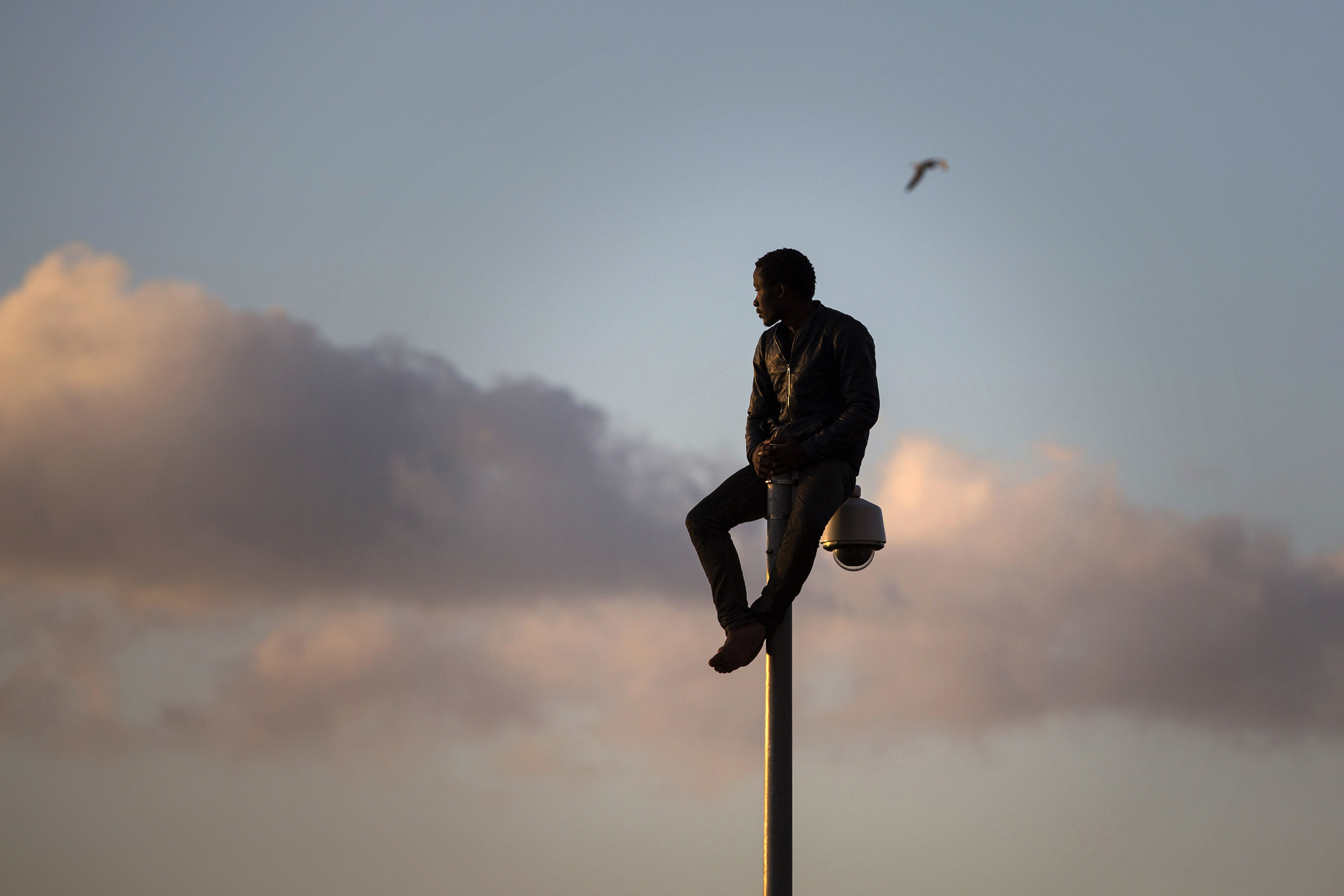 A sub-Saharan migrant sits on top of a pole set in a metallic fence that divides Morocco and the Spanish enclave of Melilla on Wednesday, May 28,  2014. © Santi Palacios