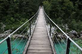 a photograph of a wooden bridge over greenish water