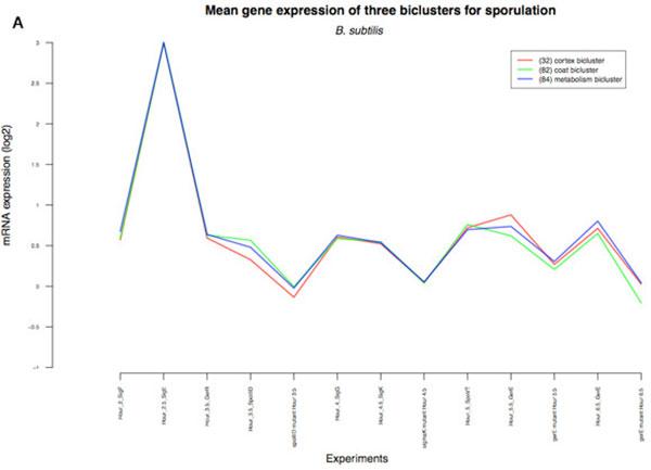 graph: Co-Regulated Gene Modules