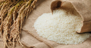 Mapping the Design of Rice