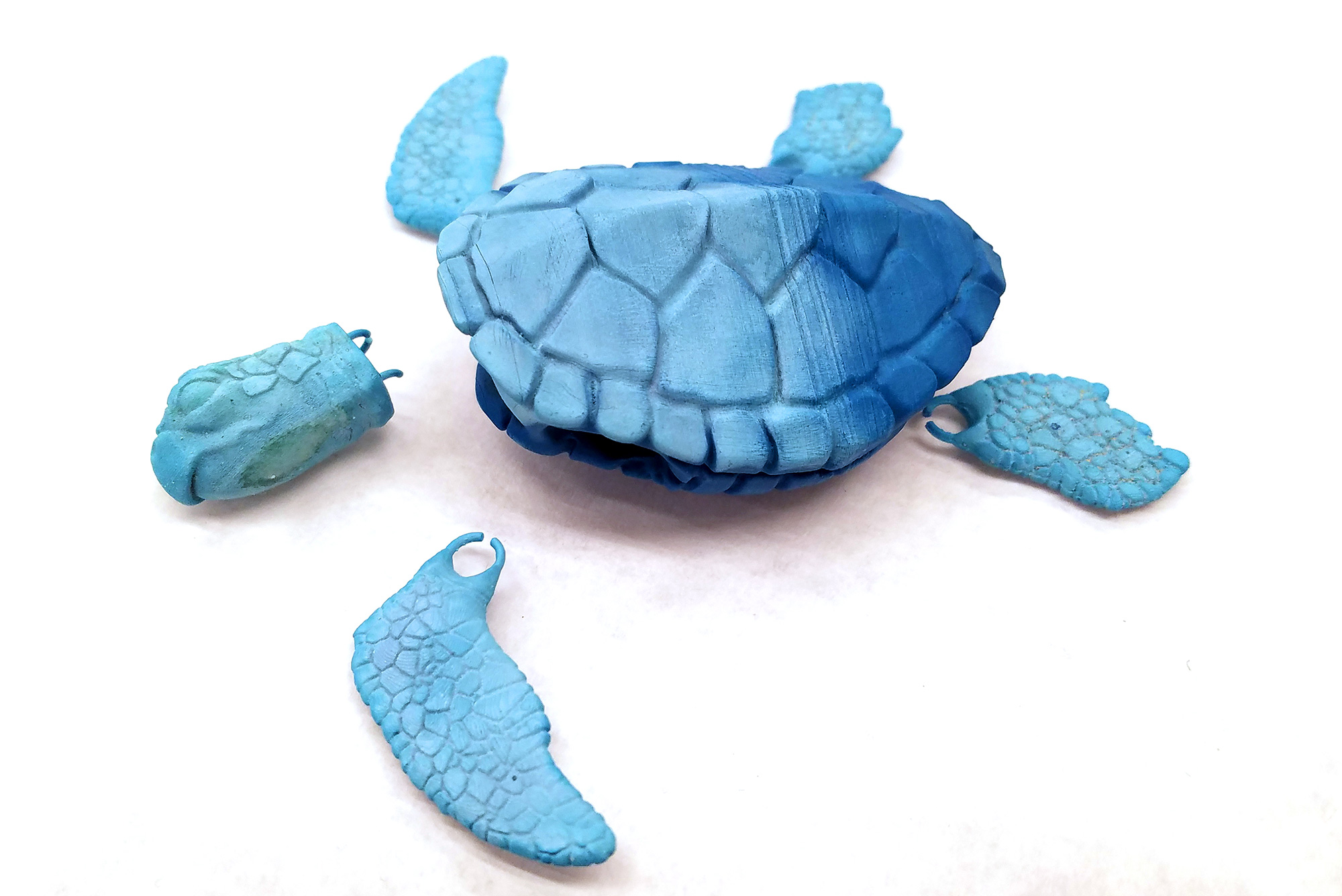 3D printed tortoise in multiple pieces