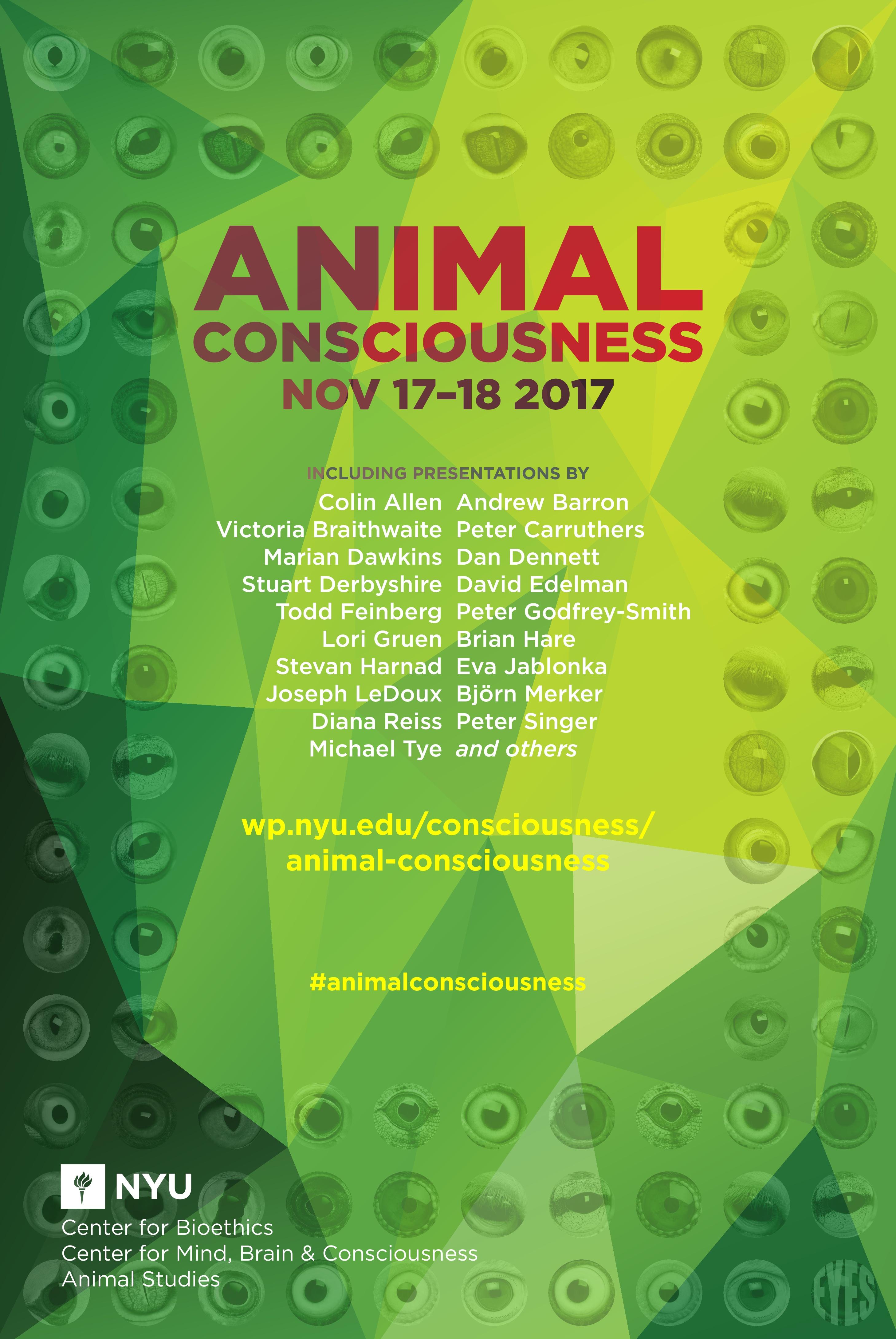 animal consciousness nyu center for mind brain and consciousness