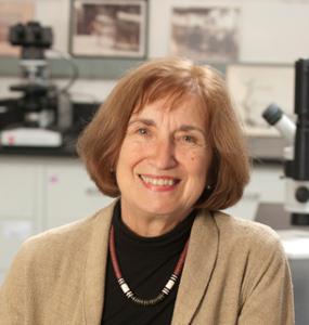 CSHO faculty member Dr. Rita Wright