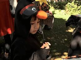 October 6:  Children's Harvest Festival