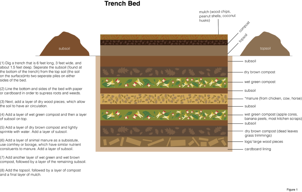 graphic showing components of layers in a trench bed