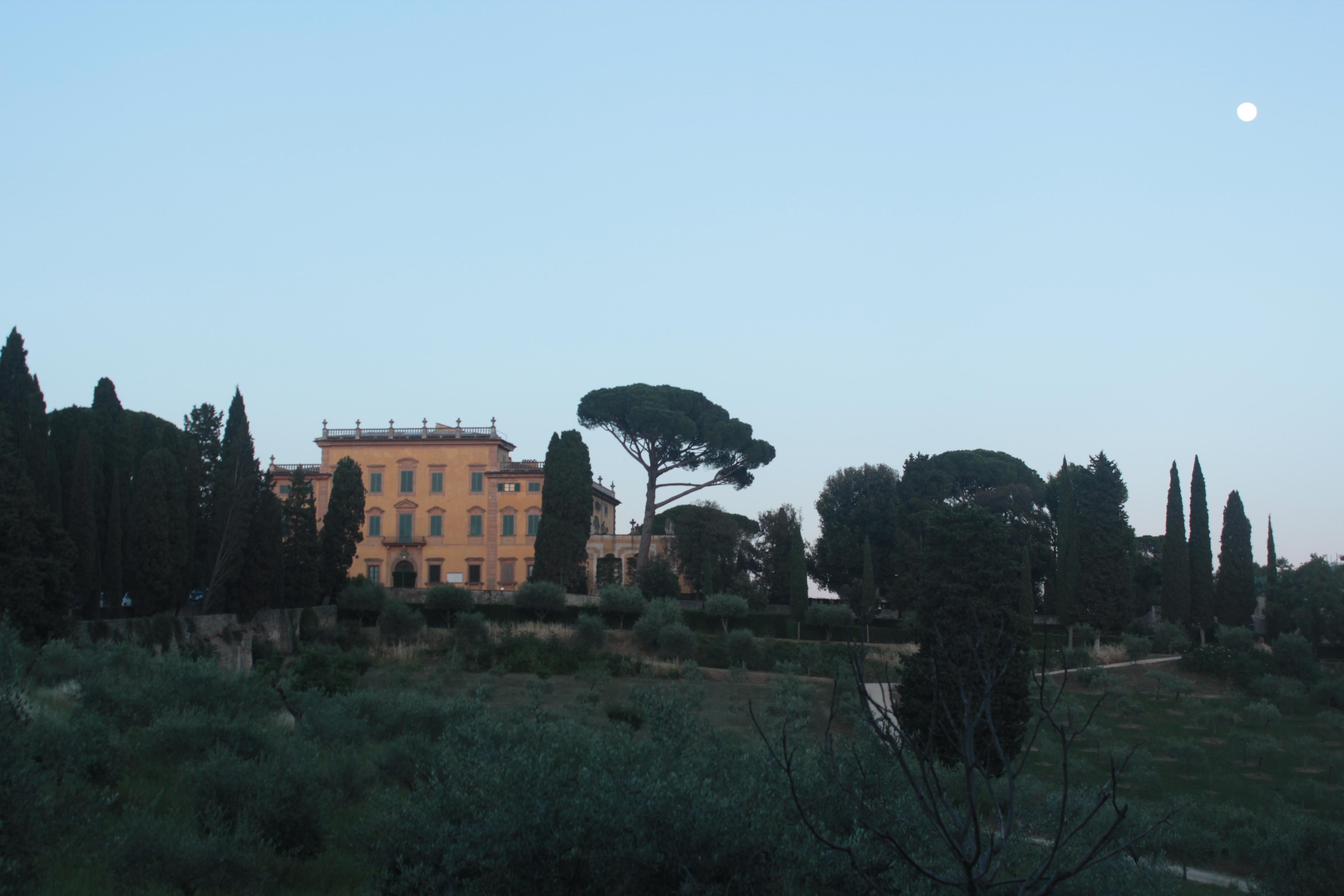 garden with villa