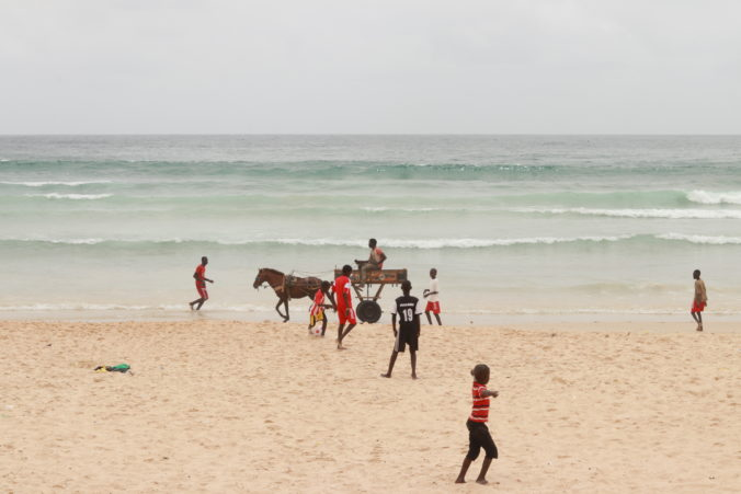 people and man riding horse cart on beach