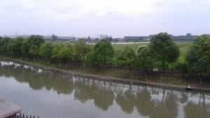 a river with trees in background
