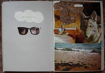 Collage including a pair of floating glasses with eyes, a wolf, and a beach