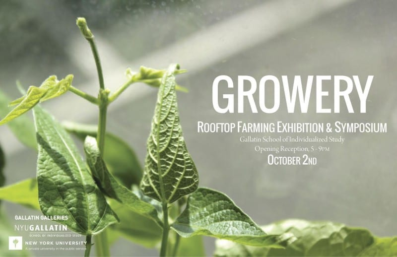 "A poster featuring sunlit leaves reading ""Growery"""