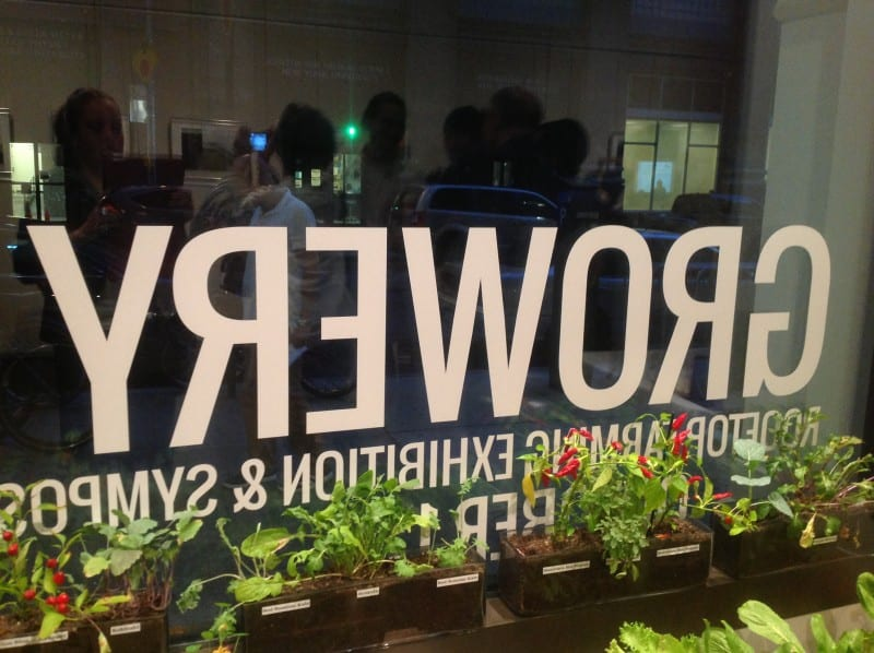 "A row of plants next to the Gallery window featuring a vinyl that reads ""Growery"""