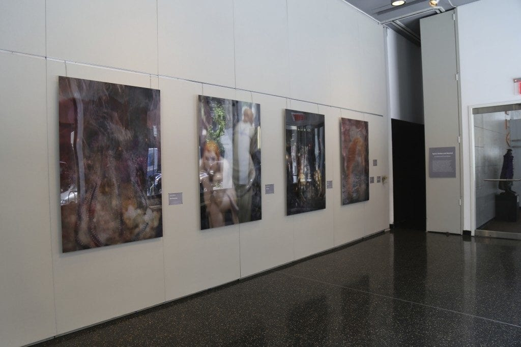 An angled view of the gallery wall containing several photographs