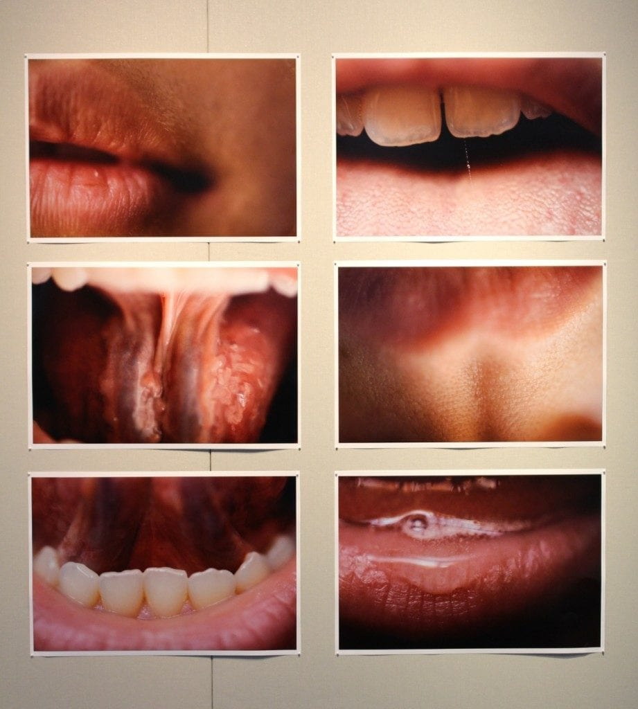 Photo-set of different mouths opening and closing