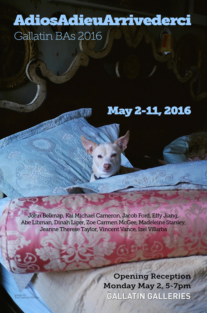 Graphic of Exhibition. Portrait of dog sitting in bed.