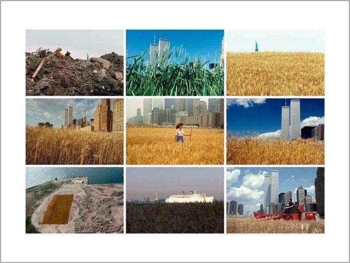 3x3 Landscape images by Agnes Denes Wheatfield