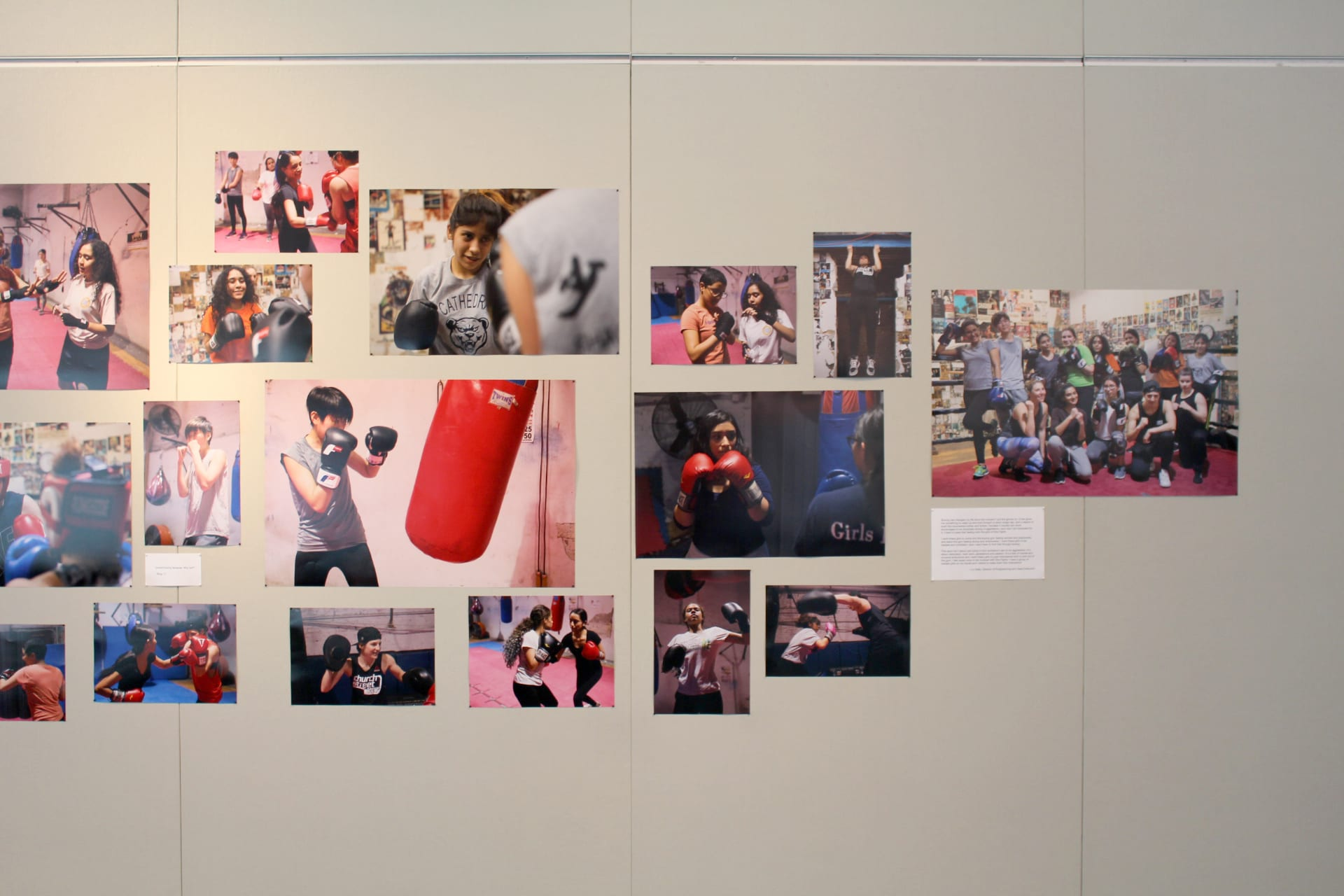 Collage of boxing photos