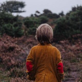 Niño, de espaldas, mirando hacia unos matorrales