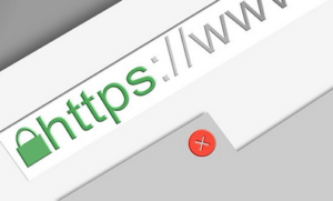 Screenshot showing a truncated view of an internet browser address bar, with a green padlock symbol followed by https and www