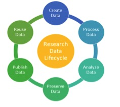 The research data lifecycle