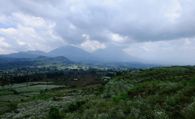 Rwanda Reflections: Two Student's Holistic Perspectives on GFIs