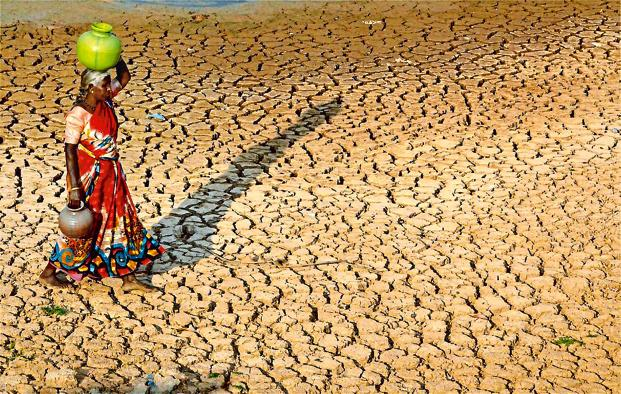 The UN wants us to stop desertification, here\'s how we\'re gonna do ...