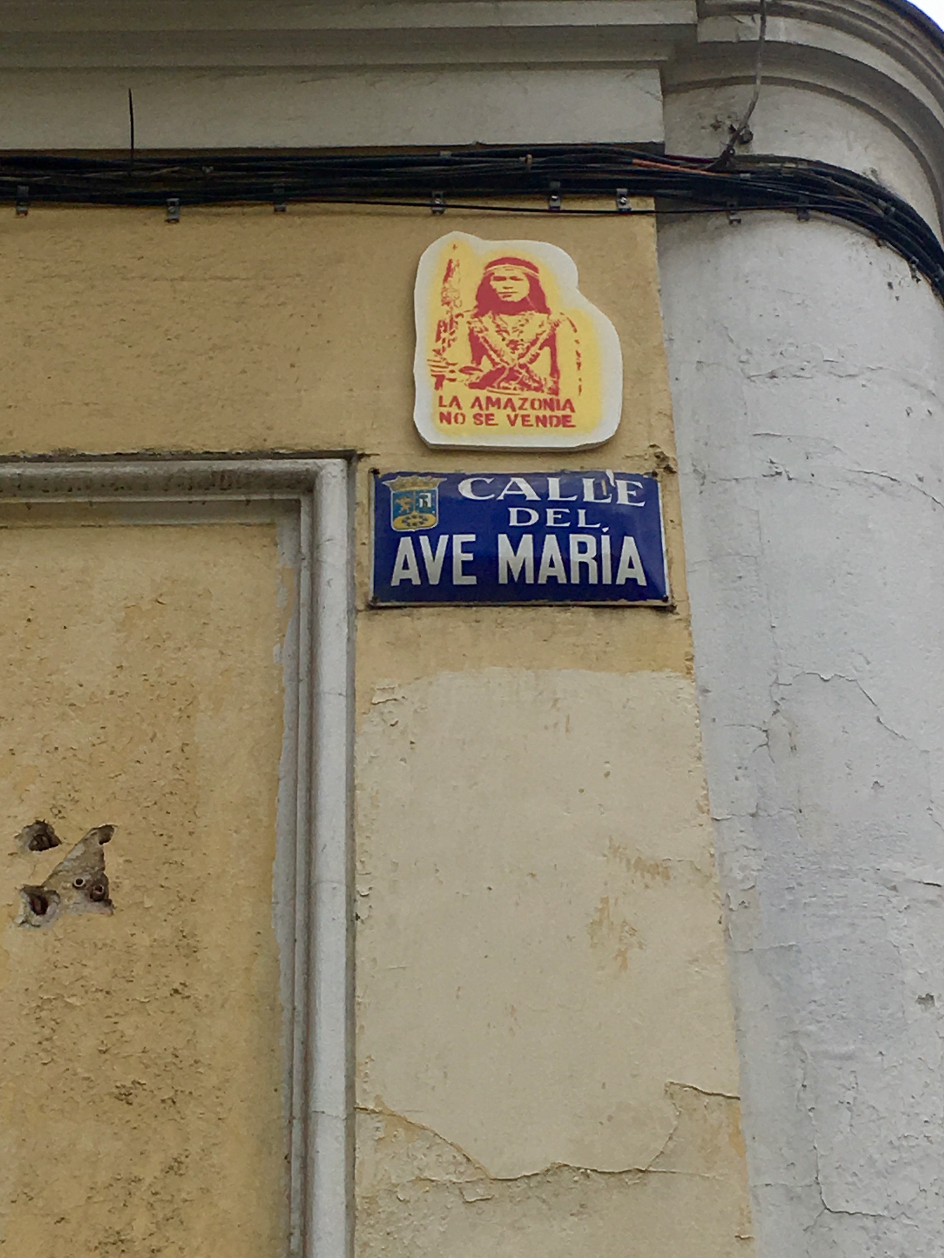 The name of the street 'Ave María' juxtaposed with an artwork stating 'the Amazon will not be Sold'